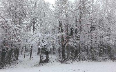 Winter Magic at Ca Dij Cavaij